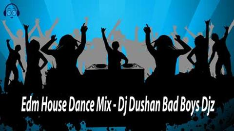 Edm House Dance Mix Dj Dushan Bad Boys Djz 2020 sinhala remix DJ free download