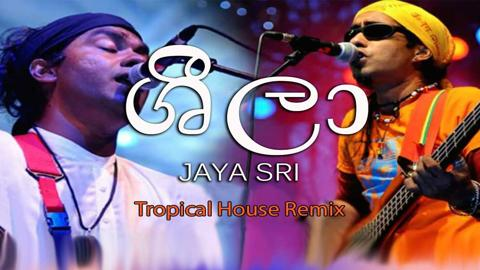 Sheela Tropical House Remix sinhala remix free download